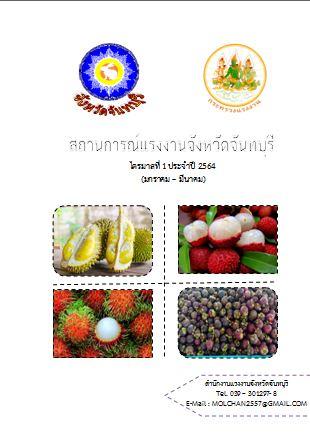 สถานการณ์แรงงานจังหวัดจันทบุรี ไตรมาส 1/2564